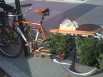 Xtracycle and Christmas Tree